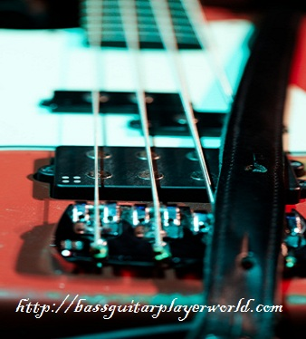 bass lessons for new players